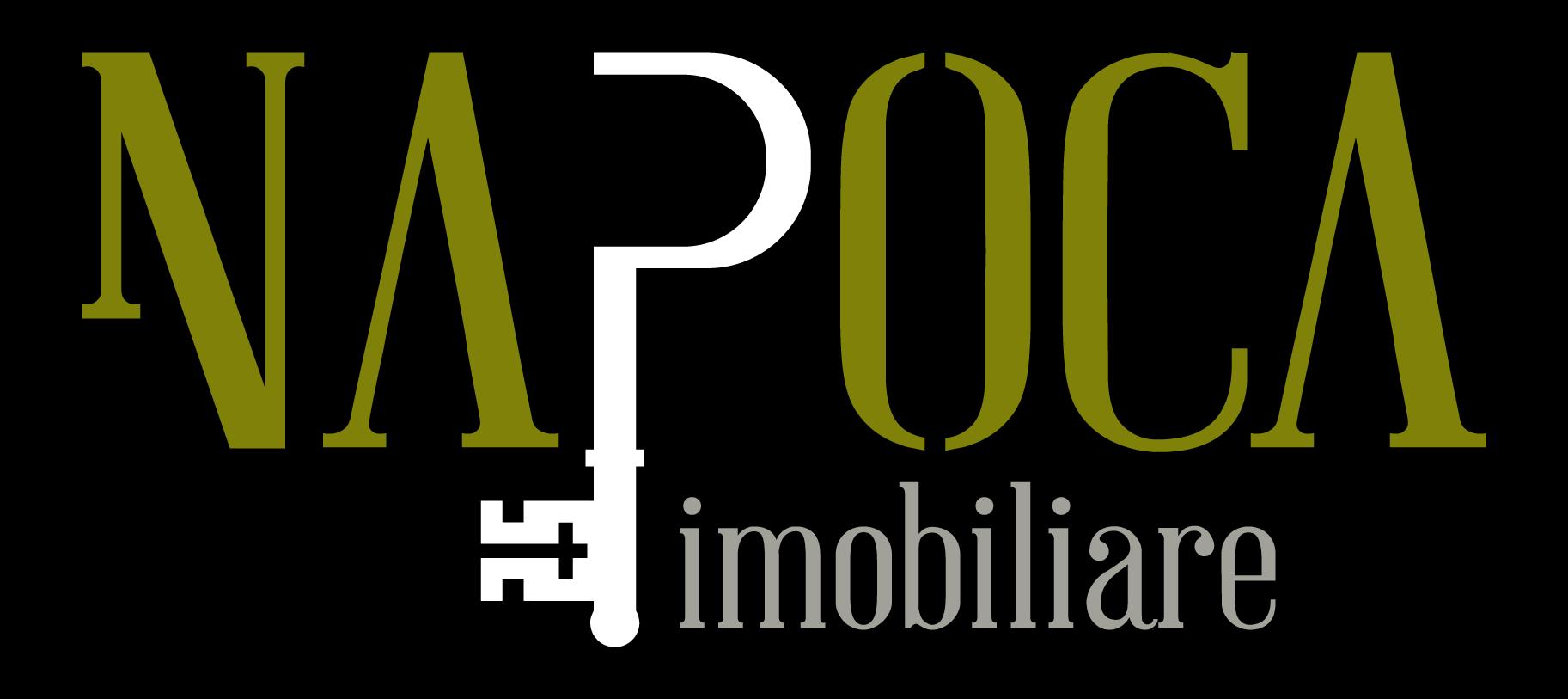 Napoca Imobiliare