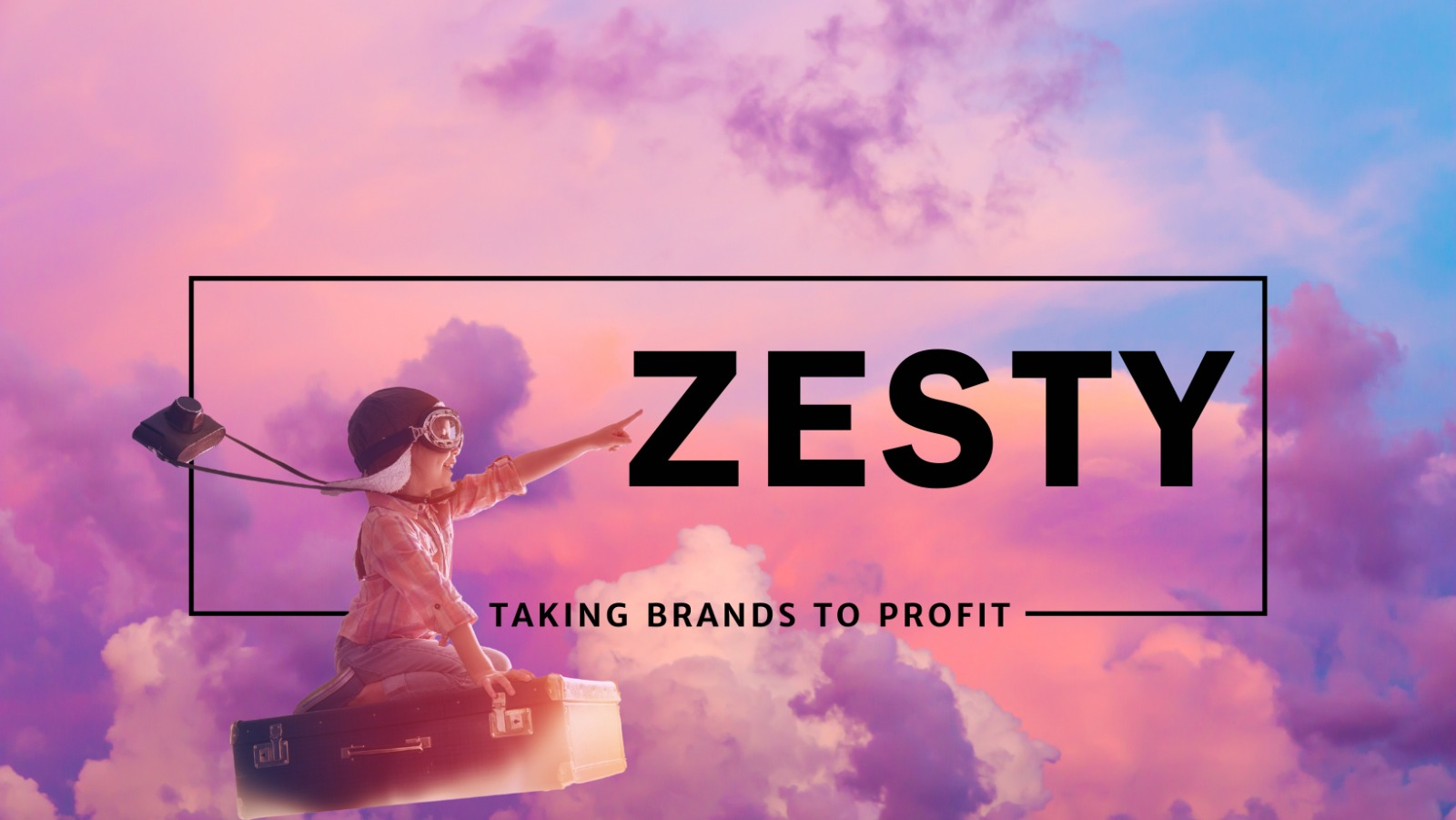 ZESTY Business Consulting