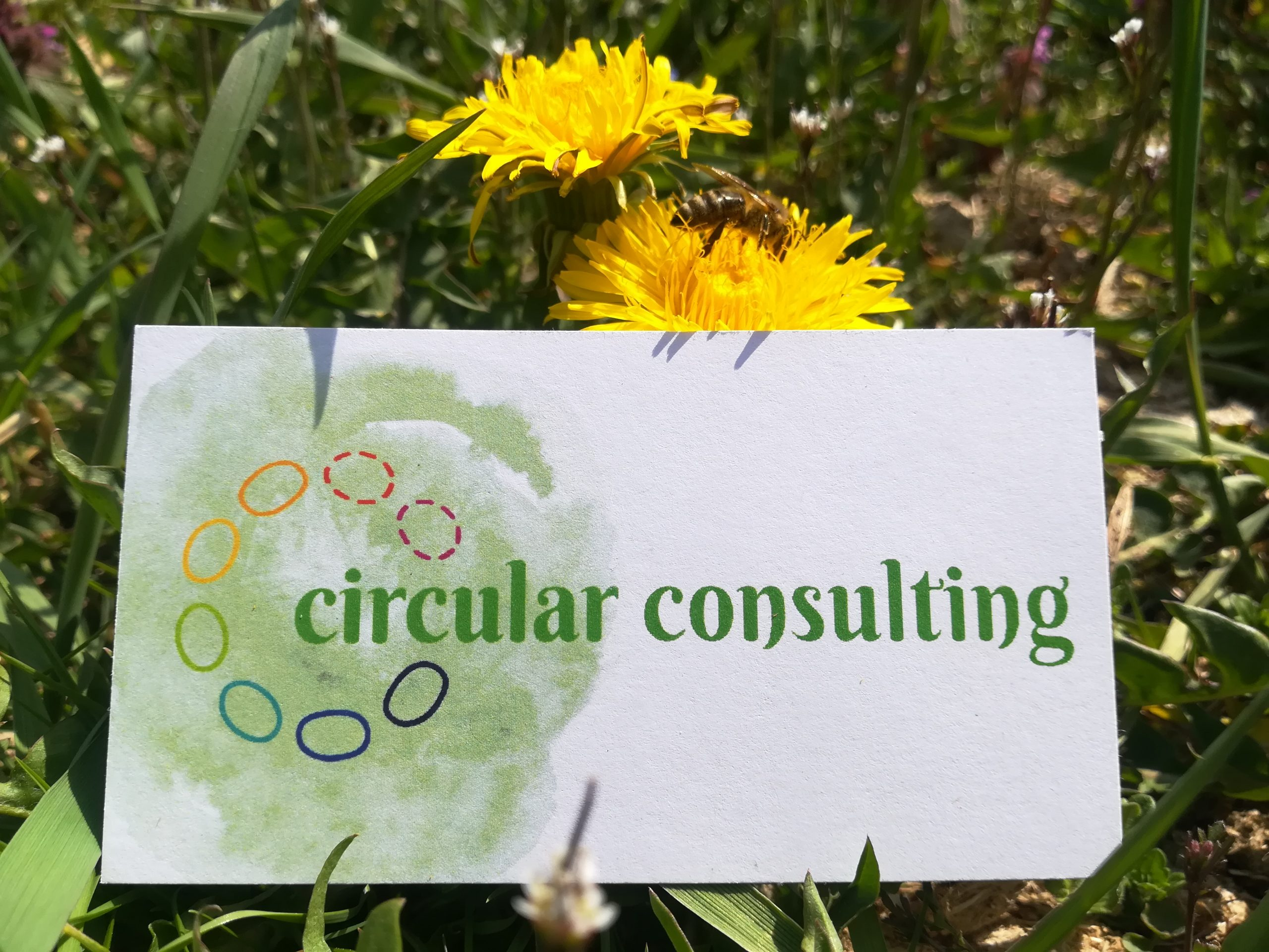 Circular Consulting