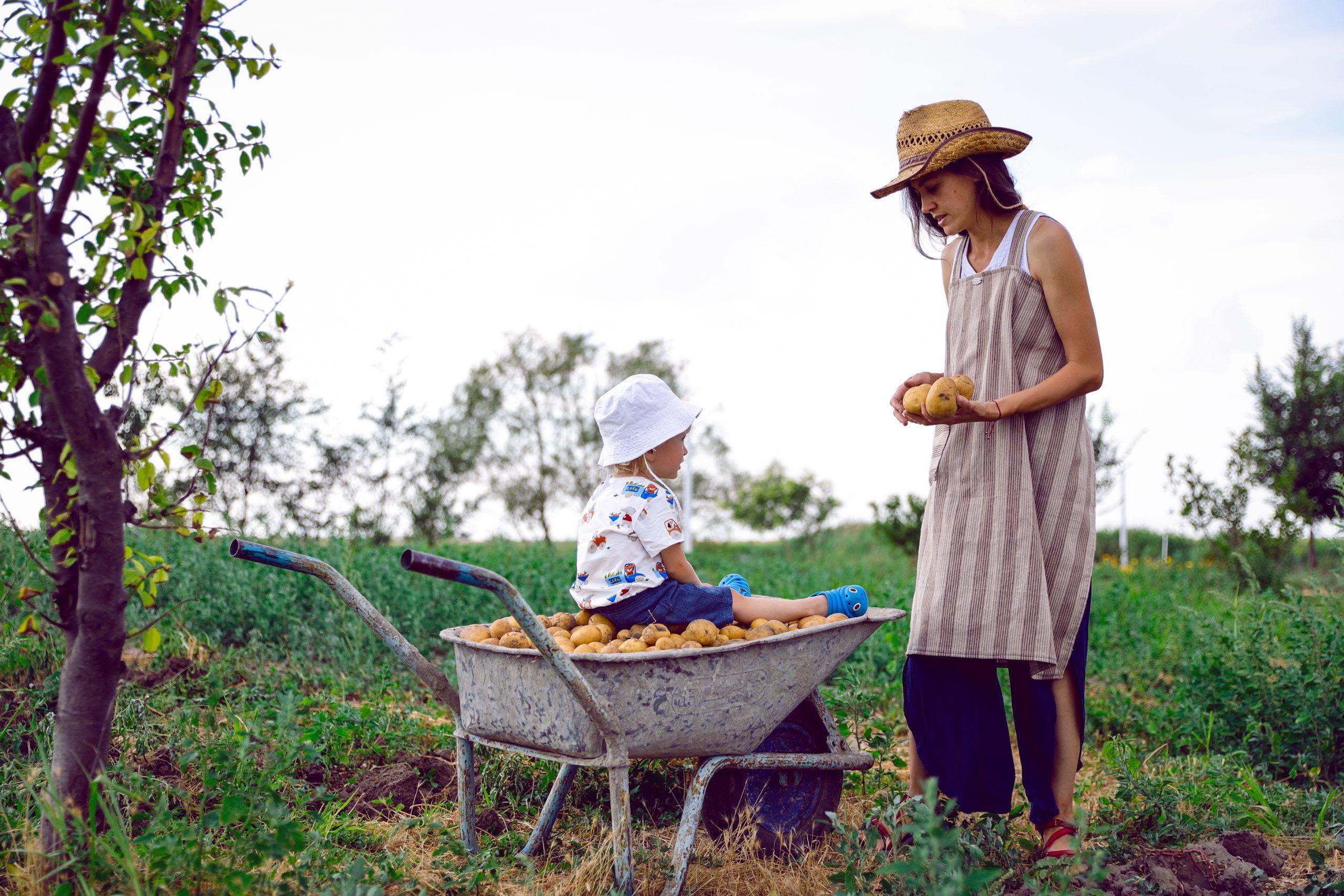 Reconectarea copiilor cu natura prin Cutia Naturii