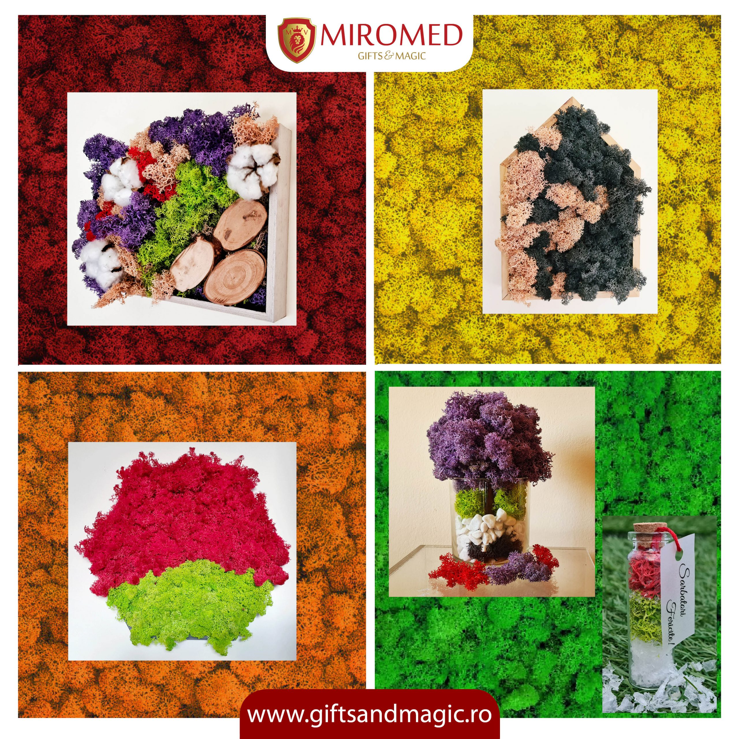 Miromed-cover-974bd420